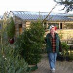 Kerstbomen vanaf 8 euro 50